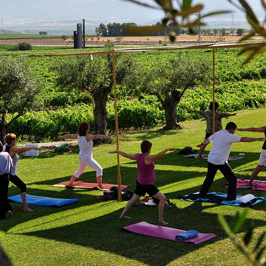 LAUS & Yoga