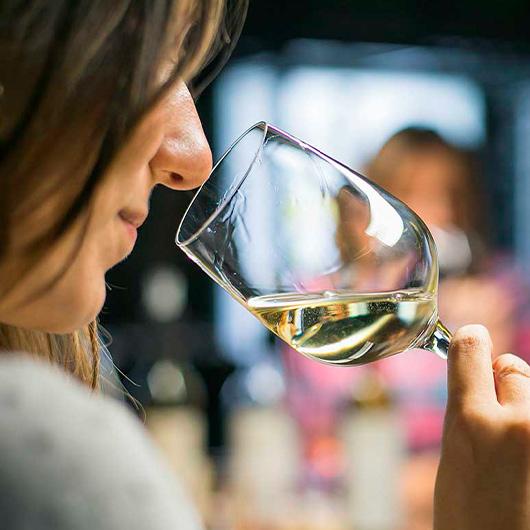 LAUS & Iniciación a la cata de vinos
