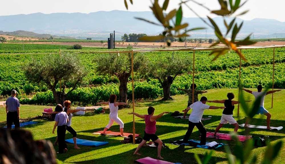 yoga entre viñedos
