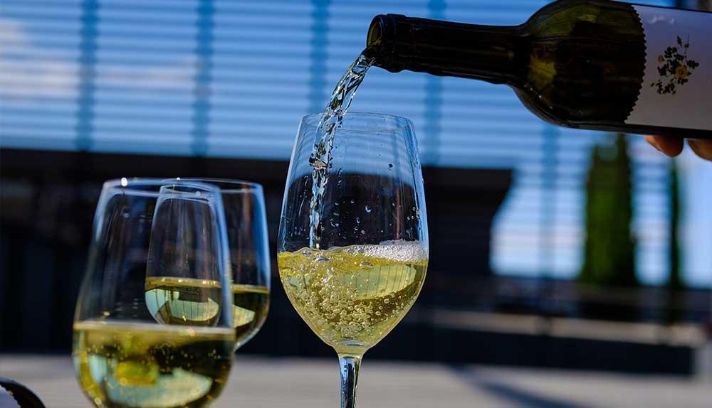 diferencias entre un vino varietal y un monovarietal